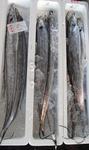 20120402.sword.JPG