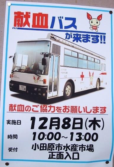 20161208_bloody.JPG